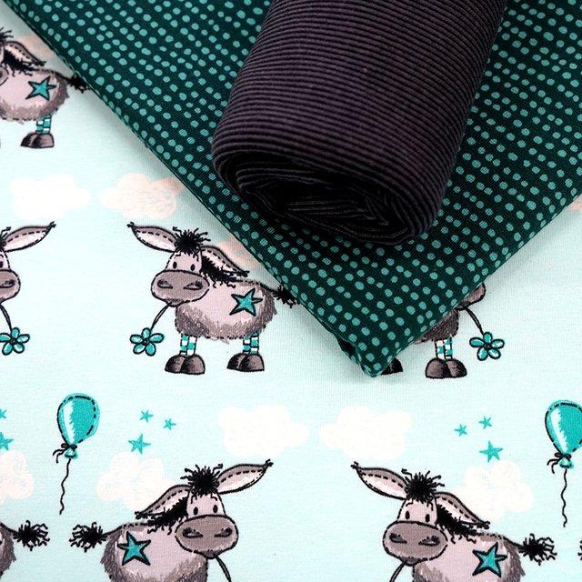 Biojersey Donkey Lou - türkis