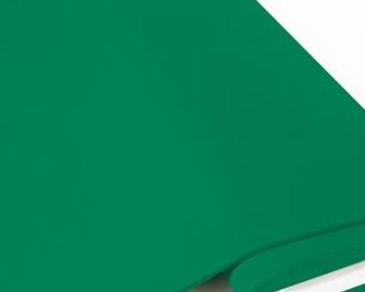 Biojersey uni - blattgrün (mittelgrün)